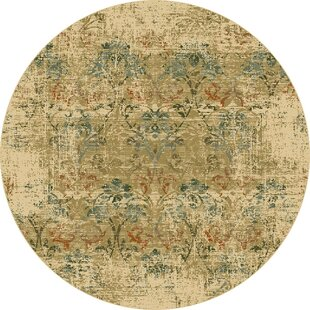 Aminata Area Rug by Lark Manor