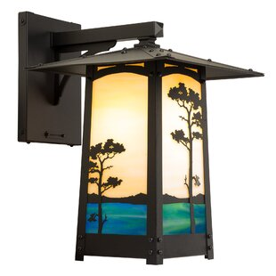Dever Monterey Pine Small Outdoor Wall Lantern