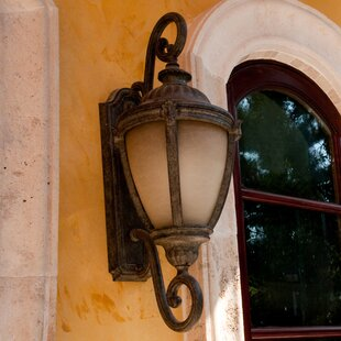 Inexpensive Braylsham 1-Light Outdoor Wall Lantern By Astoria Grand
