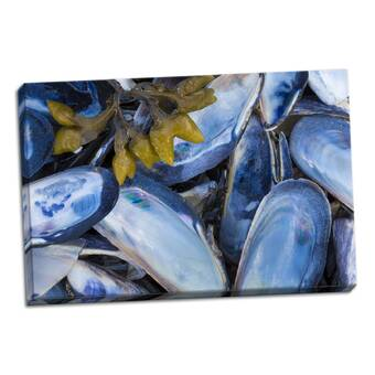 Breakwater Bay Mussels Graphic Art Print On Wrapped Canvas Wayfair