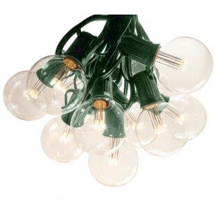 Hometown Evolution, Inc. Globe String Lights