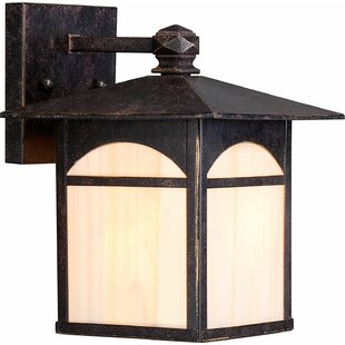 Sweeny 1-Light Outdoor Wall Lantern by Millwood Pines
