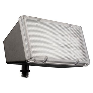 Lithonia Lighting Security 2-Light Flood Light