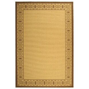 Romola Border Brown/Tan Indoor/Outdoor Area Rug