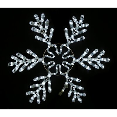 Queens of Christmas White Rope Lit Snowflake Ice