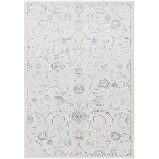 Compare Pickrell Distressed White/Light Gray Area Rug ByOne Allium Way