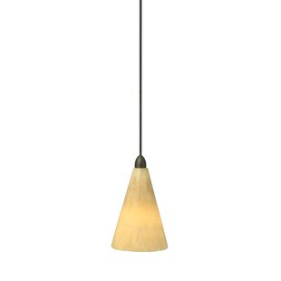 Fleur De Lis Living Chamberlin 1-Light Co..