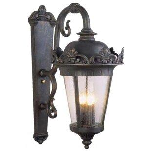Alcott Hill Petrey 4-Light Outdoor Wall Lantern