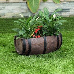 Barrel Large Planters You Ll Love In 2020 Wayfair