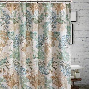 Sea Shell Shower Curtain Wayfair