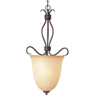 Three Posts Birdsall 4-Light Urn Pendant