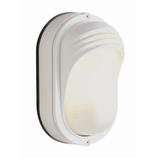 Big Save 1-Light Outdoor Flush Mount By TransGlobe Lighting