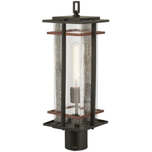 Plaisance Outdoors 1-Light Lantern Head