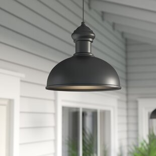 Compare Binne 1-Light Outdoor Pendant By Breakwater Bay
