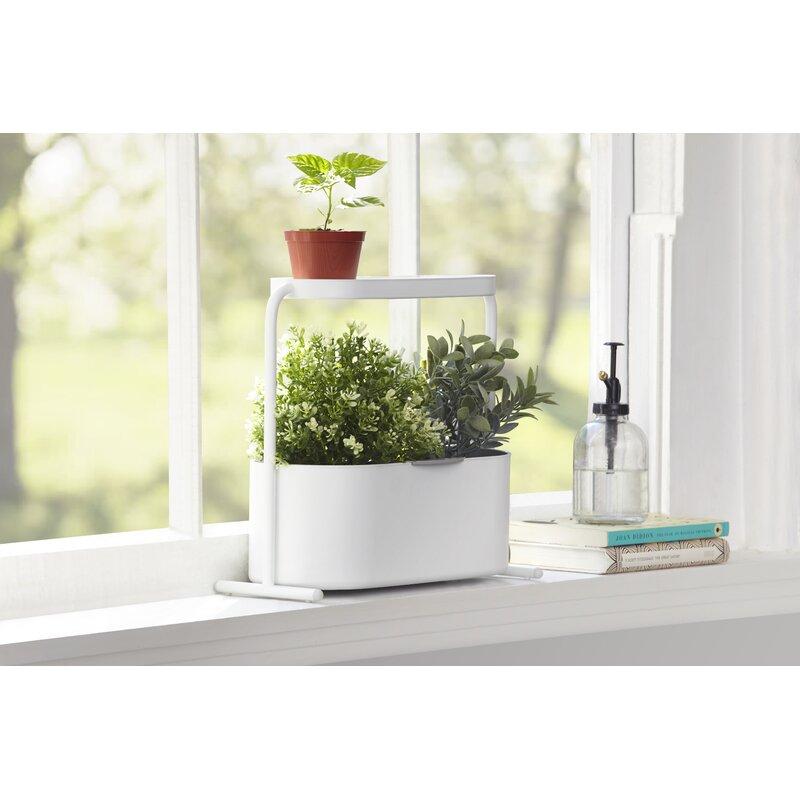 Umbra Giardino Planter Box Wayfair