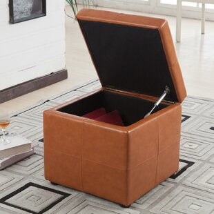 Luxury Comfort Storage Ottoman by Bellasario Collection