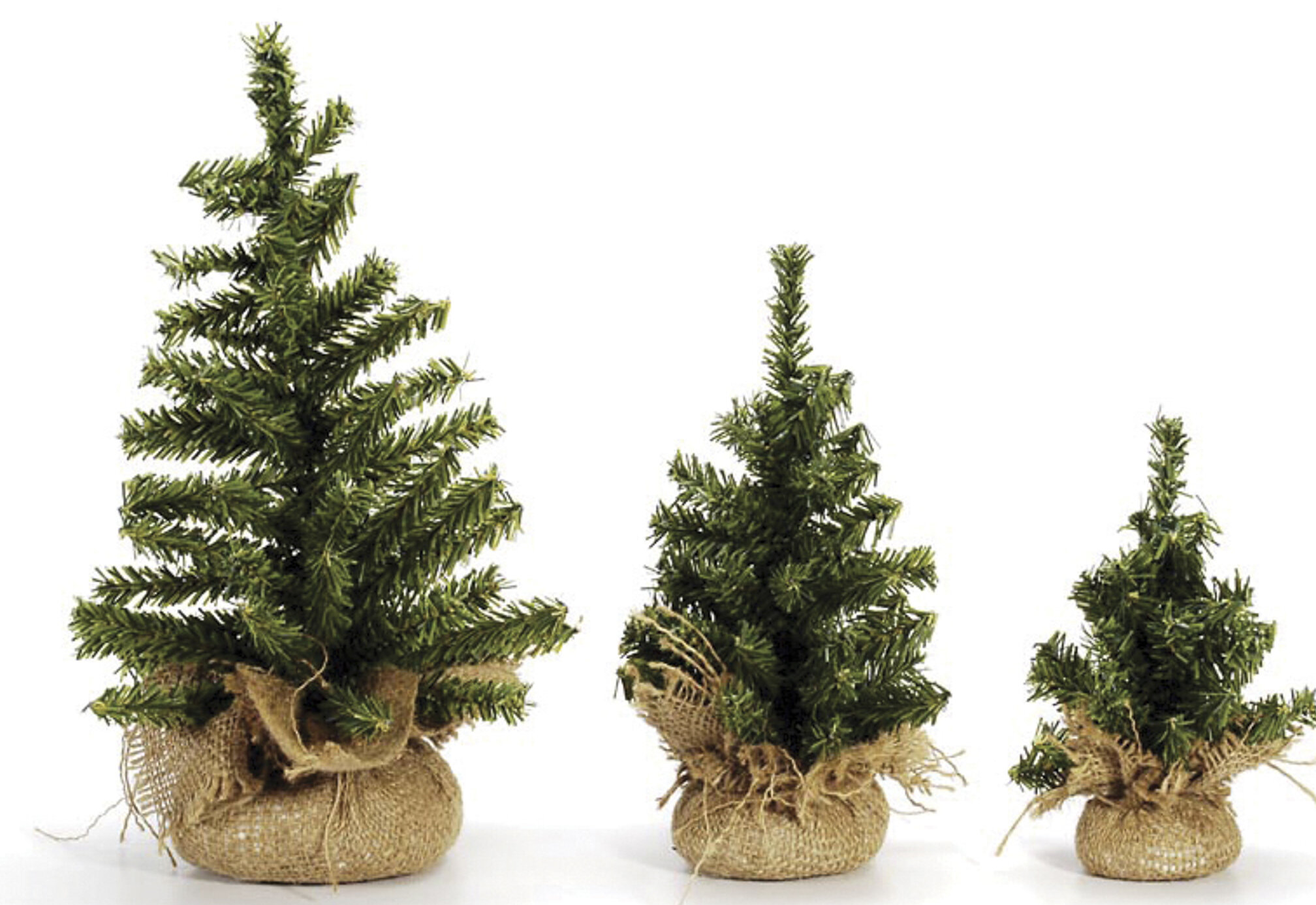 The Holiday Aisle Mini Canadian Green Pine Artificial