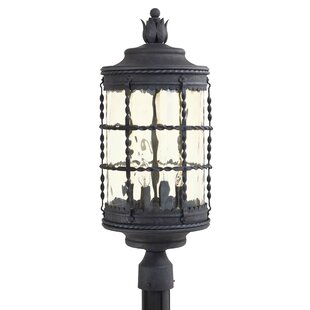Calem Outdoor 4-Light Lantern Head by Gracie Oaks