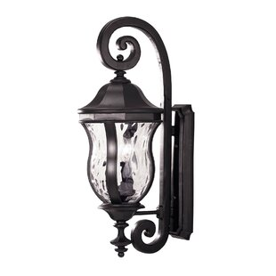 Coutu Outdoor Wall lantern by Darby Home Co