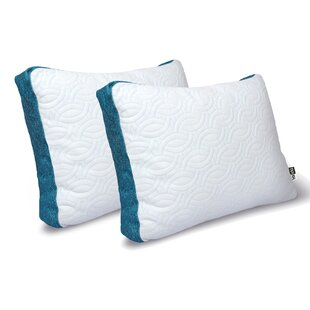 Complete Cool Memory Foam Standard Pillow (Set of 2)