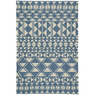 Salinas Hand Hooked Ivory/Blue Indoor/Outdoor Area Rug