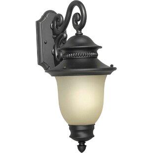 Charlton Home Doris 1-Light Outdoor Wall Lantern