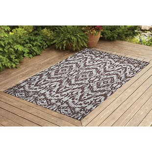 Starnes Dark Brown Indoor/Outdoor Area Rug