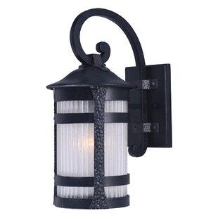 Bloomsbury Market Alarice 1-Light Outdoor Wall Lantern
