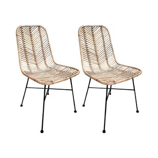 Tierra Verde Dining Chair (Set Of 2) By Beachcrest Home