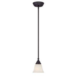 Charlton Home Eichelberger 1-Light Cone Pendant