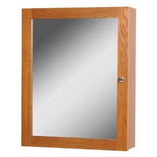 Deanfield 19 x 23.88 Surface Mount Medicine Cabinet by Hazelwood Home