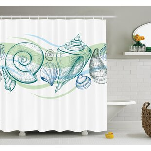 Cafferkey Seashells Shower Curtain ByHighland Dunes