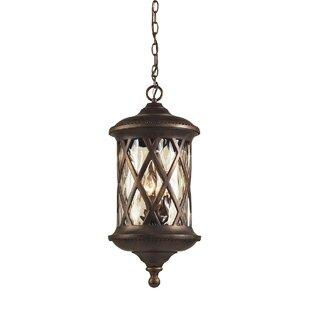 Fleur De Lis Living Whittington 3-Light Outdoor Hanging Lantern
