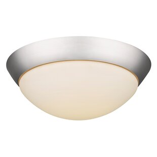 Winston Porter Viviano 2-Light Flush Mount