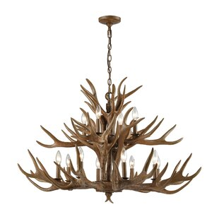 Price Check Denville 12-Light Outdoor Chandelier By Loon Peak