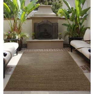 Adult Outdoor Rugs Joss Main