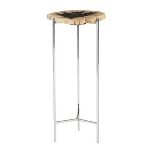 Petrified Wood Beverage End Table
