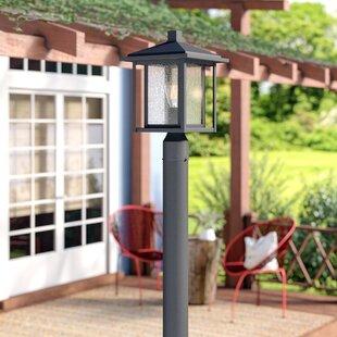 Hungate Outdoor 1-Light Lantern Head by Bloomsbury Market