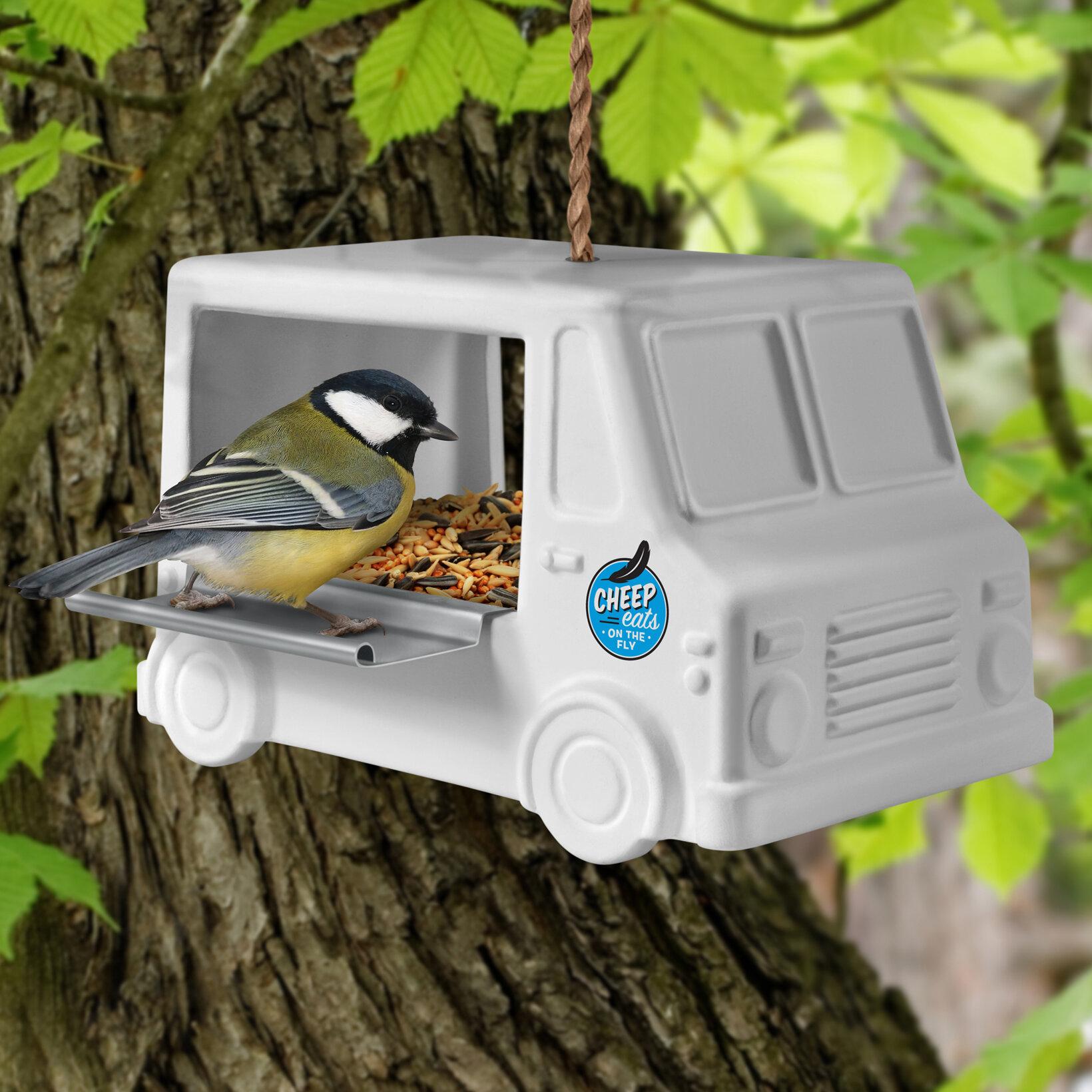 Fred Yard Goods Cheep Eats Decorative Bird Feeder   Wayfair