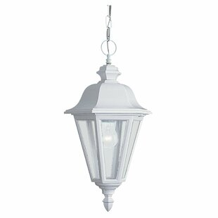 Price Check Redfern Classic 1-Light Outdoor Hanging Lantern By Alcott Hill
