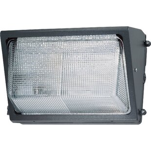 Nuvo Lighting First Lady 1-Light Outdoor Flush Mount