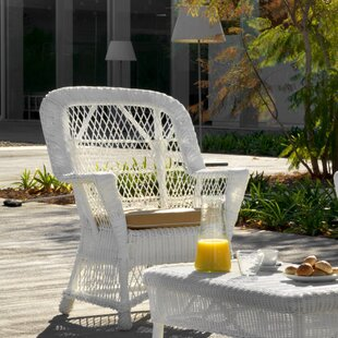 Ridgley Synthetic Fibre With Rattan Structure Chair Image