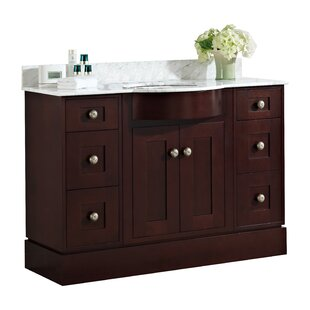Kester 48 Multi-layer Stain Single Bathroom Vanity Set by Darby Home Co