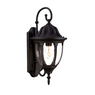 Charlton Home Pritchard 1-Light Outdoor Wall Lantern