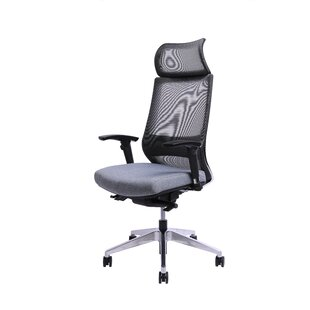 Best Choices Kowal Ergonomic Mesh Executive Chair by Latitude Run Reviews (2019) & Buyer's Guide