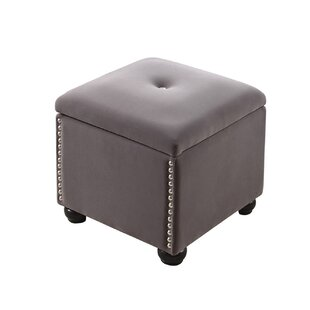 Aubina Storage Ottoman by Willa Arlo Interiors
