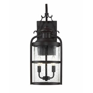 Reviews Finnick 2-Light LED Outdoor Wall Lantern By Alcott Hill