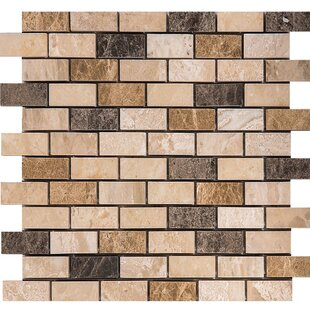Valencia Mix Marble 1 inch  x 2 inch  Stone Mosaic Tile Polished