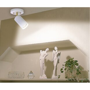 Meryl 1-Light Flush Mount by Ebern Designs