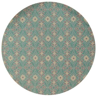 Edinburgh Handmade Aqua Indoor/Outdoor Area Rug